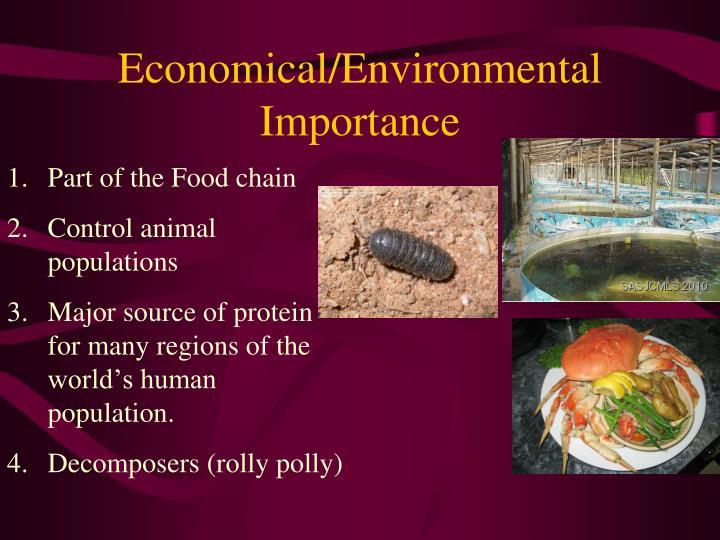 Economical/Environmental Importance