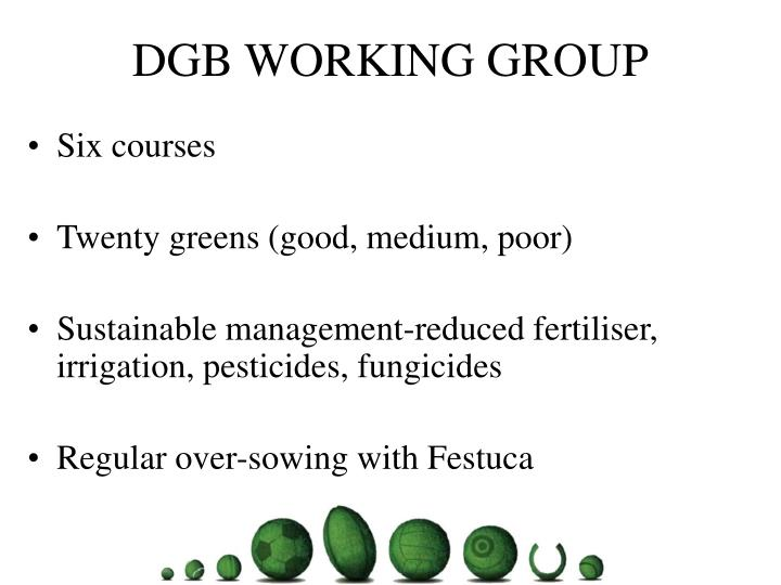 Dgb working group