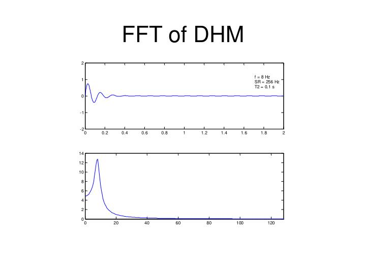 FFT of DHM