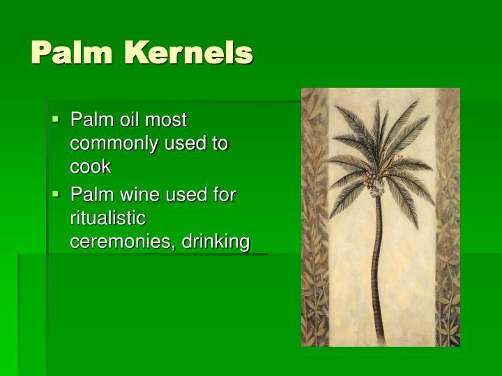 Palm Kernels