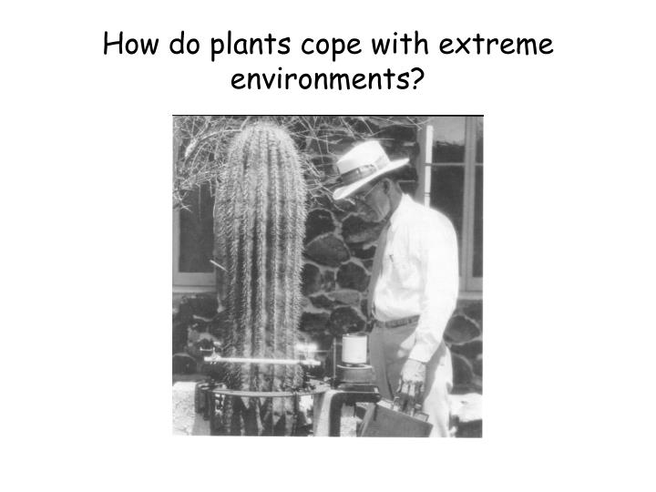 How do plants cope with extreme environments?