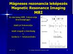 m gneses rezonancia lek pez s magnetic resonance imaging mri