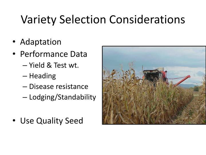 Variety Selection Considerations