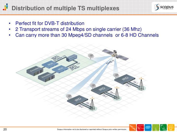Distribution of multiple TS multiplexes