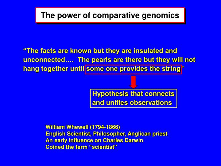 Hypothesis that connects