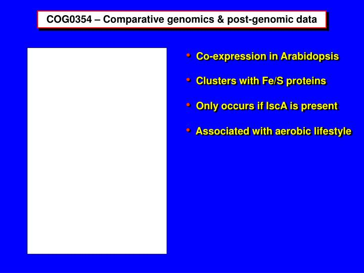 COG0354 – Comparative genomics & post-genomic data