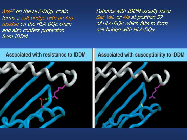 Patients with IDDM usually have