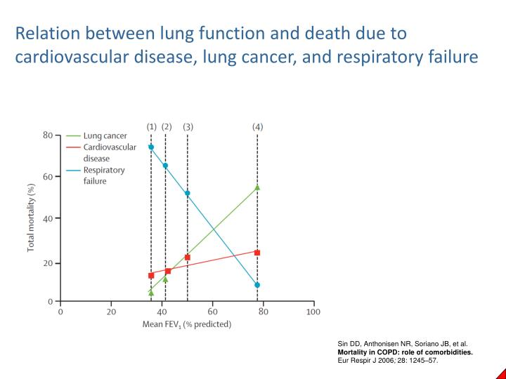 Relation between lung function and death due to