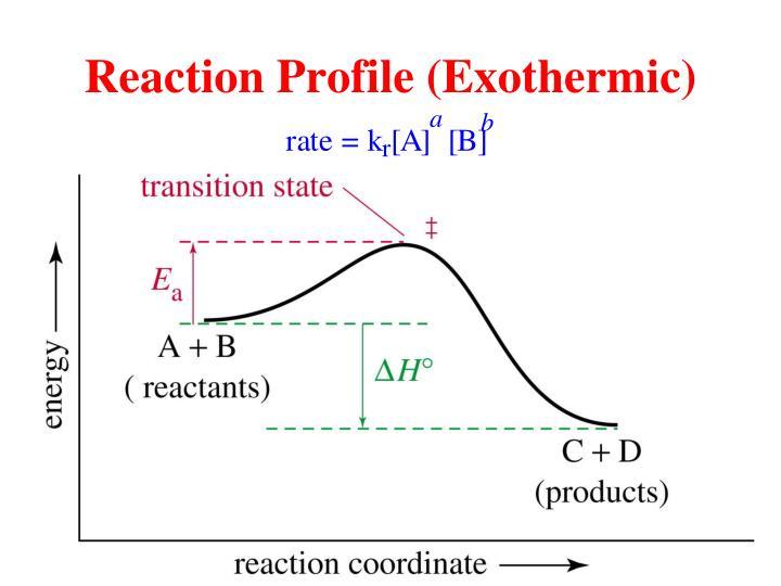 Reaction Profile (Exothermic)
