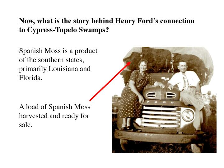 Now, what is the story behind Henry Ford's connection to Cypress-Tupelo Swamps?