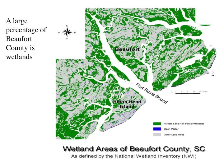 A large percentage of Beaufort County is wetlands