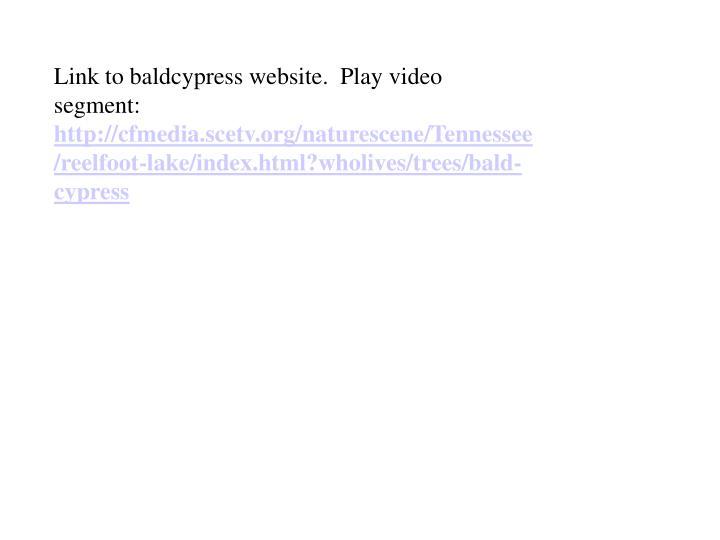 Link to baldcypress website.  Play video segment: