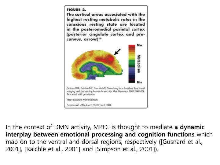 In the context of DMN activity, MPFC is thought to mediate