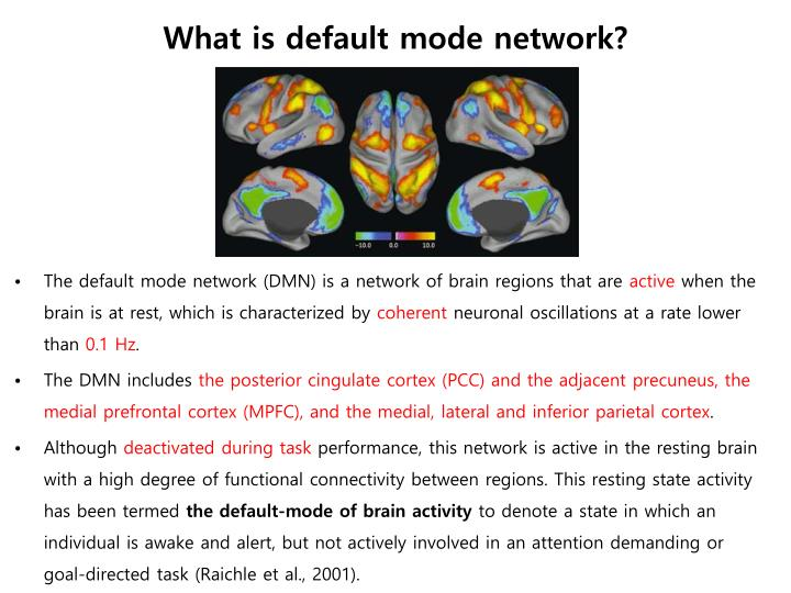What is default mode network?