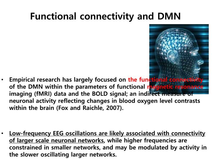 Functional connectivity and DMN
