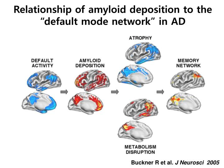 """Relationship of amyloid deposition to the """"default mode network"""" in AD"""