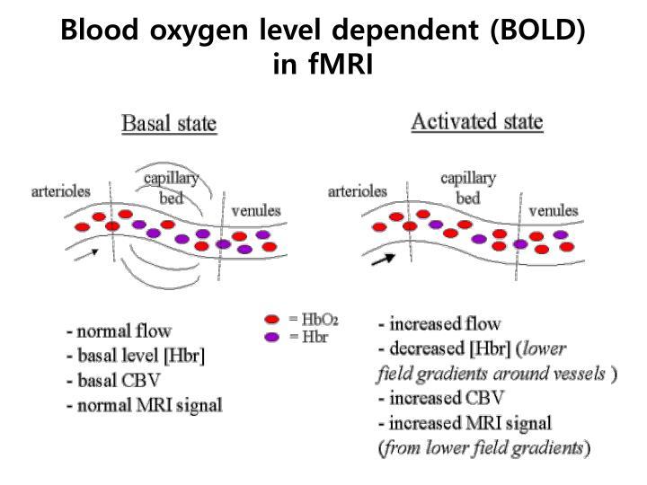 Blood oxygen level dependent (BOLD)
