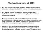 the functional roles of dmn