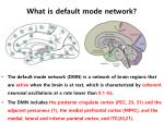 what is default mode network