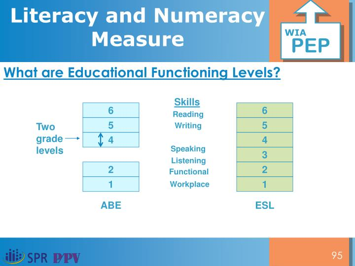 What are Educational Functioning Levels?