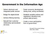 government in the information age