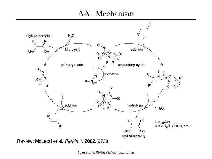 AA –Mechanism