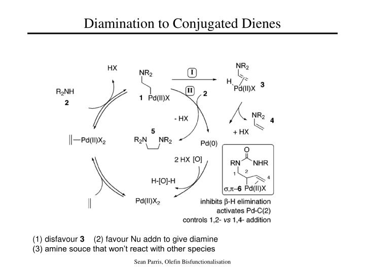 Diamination to Conjugated Dienes