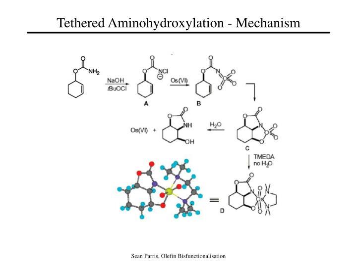 Tethered Aminohydroxylation - Mechanism