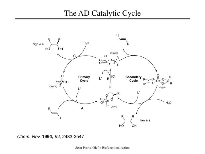 the ad catalytic cycle