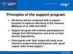 principles of the support program
