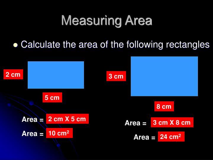 Measuring Area
