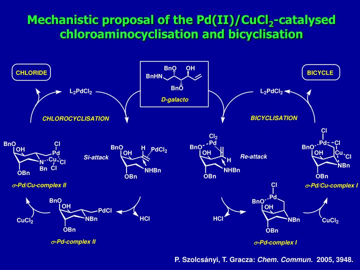 Mechanistic proposal of the Pd(II)/CuCl