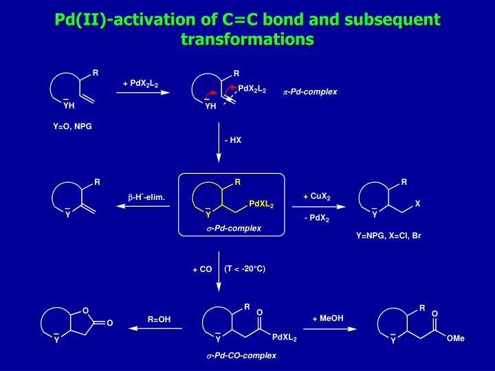 Pd(II)-activation of C=C bond and subsequent