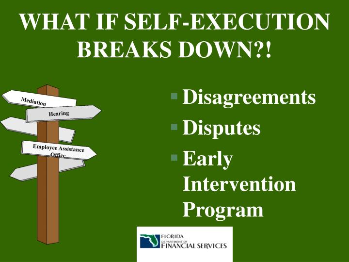 WHAT IF SELF-EXECUTION BREAKS DOWN?!