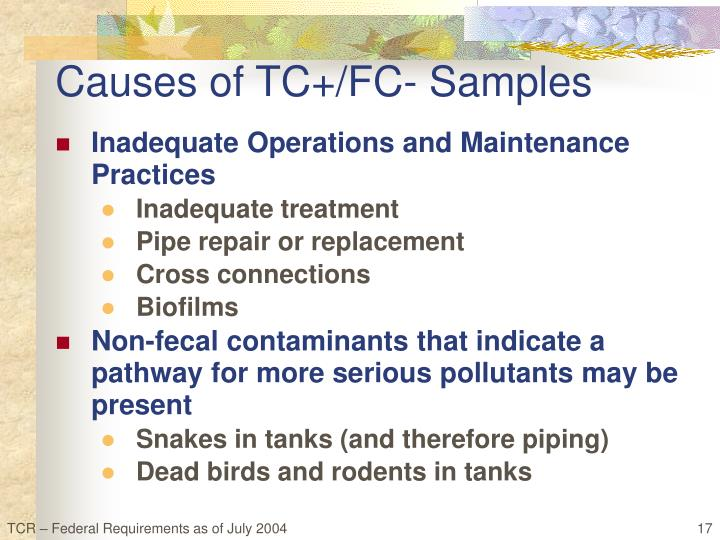 Causes of TC+/FC- Samples