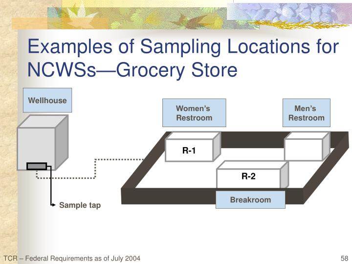 Examples of Sampling Locations for NCWSs—Grocery Store