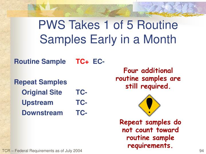 Routine Sample