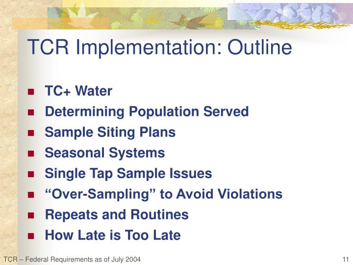 TCR Implementation: Outline