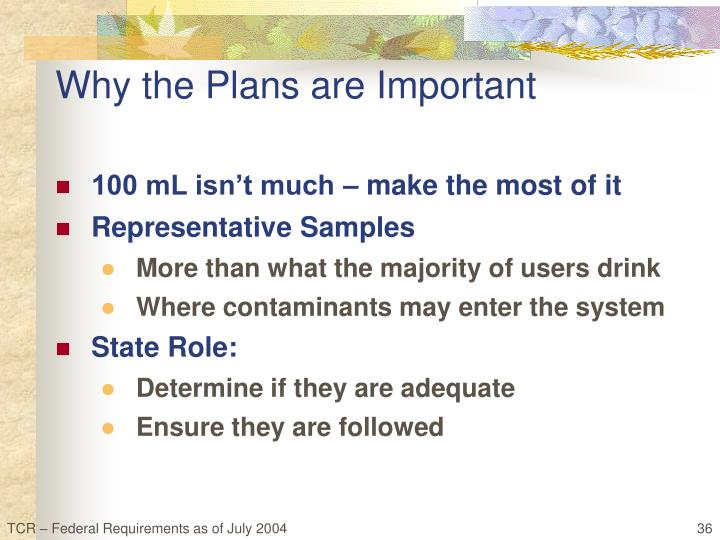 Why the Plans are Important