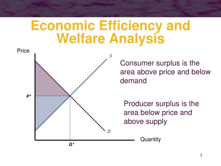 Economic efficiency and welfare analysis1