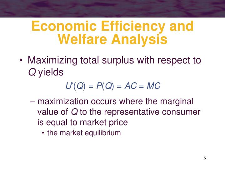 Economic Efficiency and Welfare Analysis