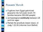 peasants revolt1