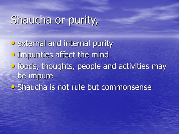 Shaucha or purity