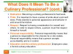 what does it mean to be a culinary professional cont