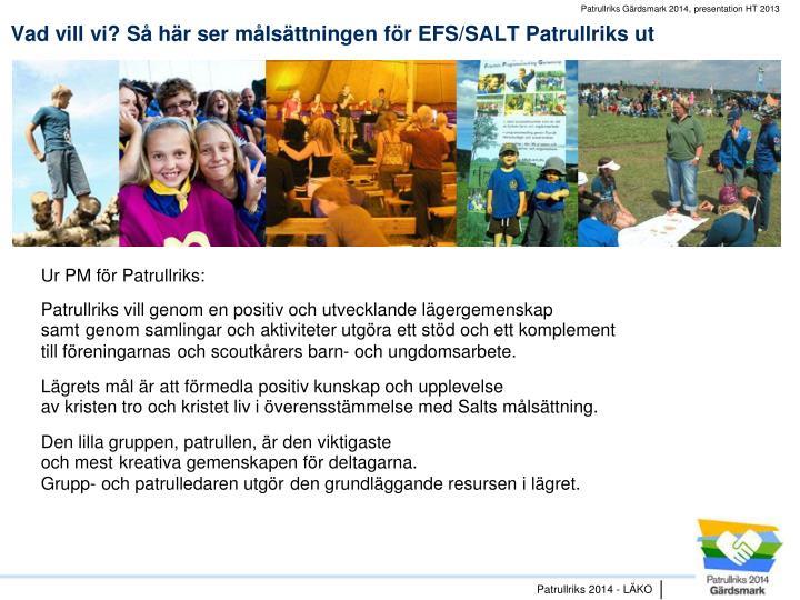 Vad vill vi? Så här ser målsättningen för EFS/SALT Patrullriks ut