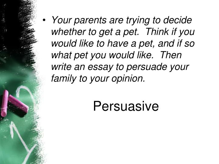 Your parents are trying to decide whether to get a pet.  Think if you would like to have a pet, and if so what pet you would like.  Then write an essay to persuade your family to your opinion.