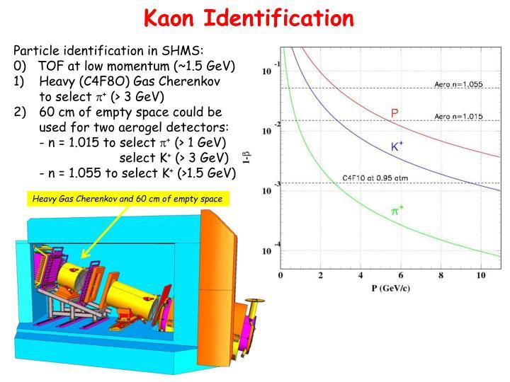 Kaon Identification