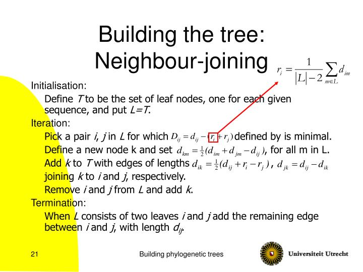 Building the tree:
