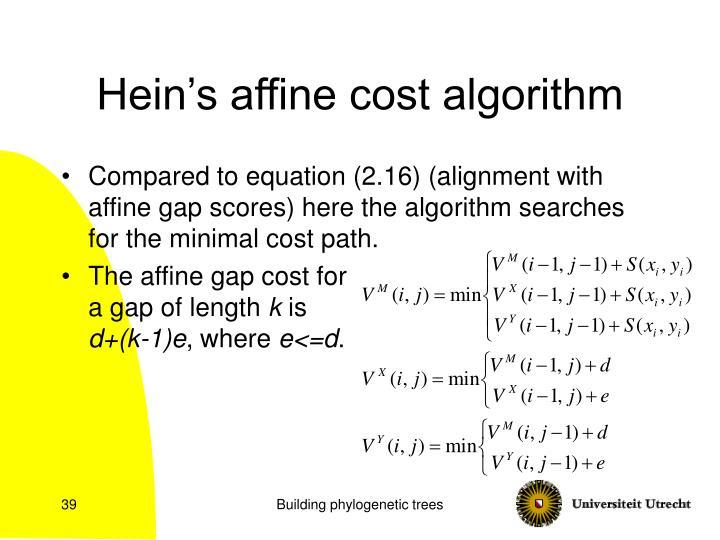 Hein's affine cost algorithm