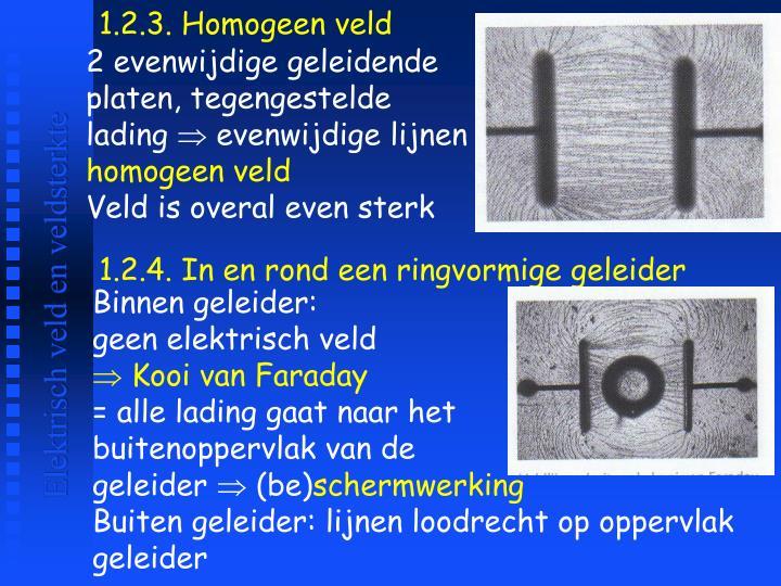 1.2.3. Homogeen veld